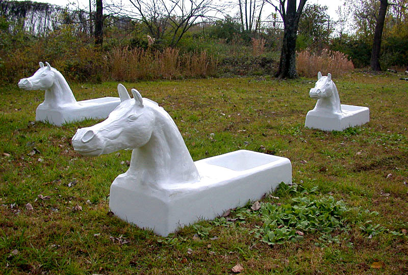 They Carry the River on Their Backs - cast iron horse tubs