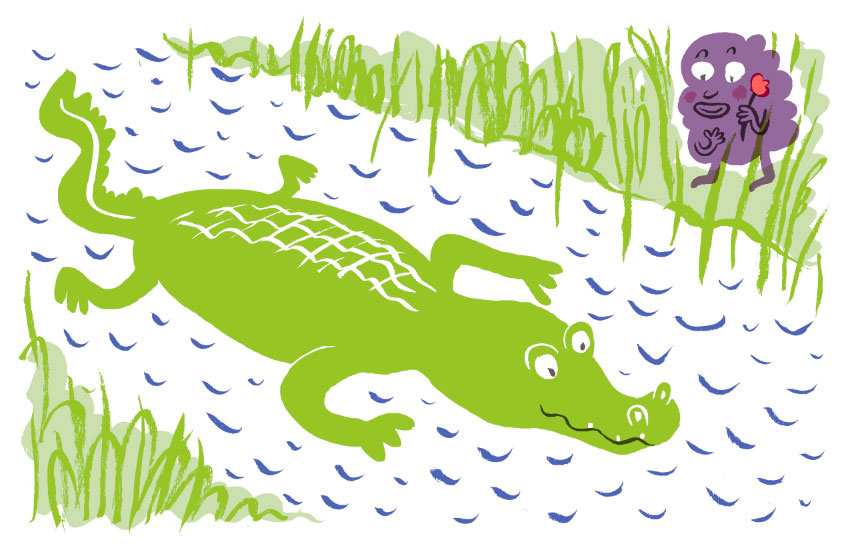 An alligator illustration from a zine that she printed on the Risograph at SVA (click to enlarge)